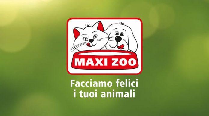 Banco Di Napoli Lavoro Con Noi : Maxi zoo lavora con noi il navigatore curioso