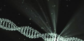 Mutazioni-genetiche