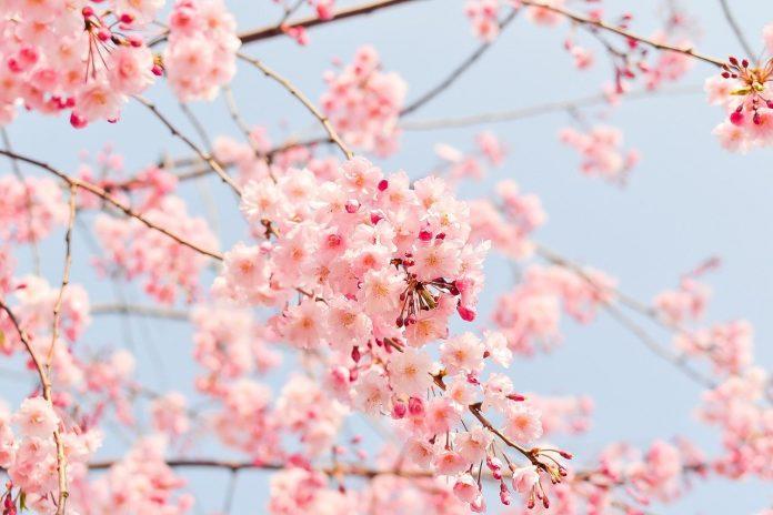 Equinozio-di-primavera